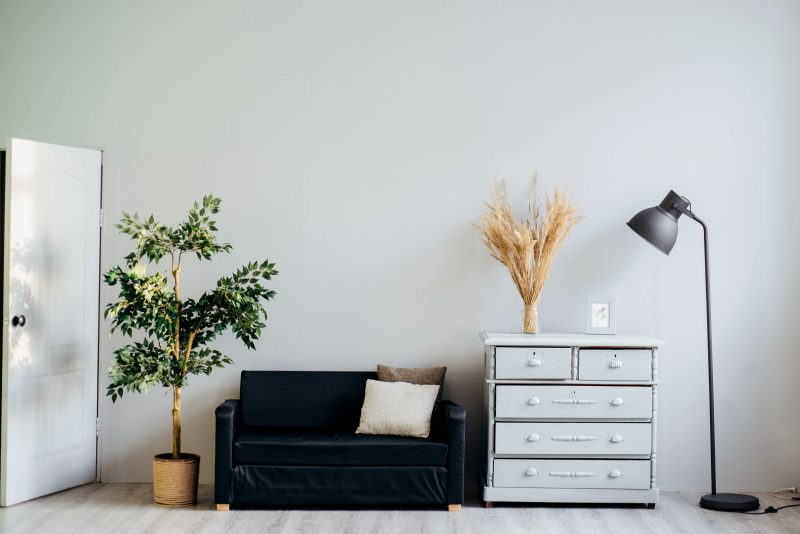 an indoor plant, a couch, a cabinet and a lamp lined up in a living room